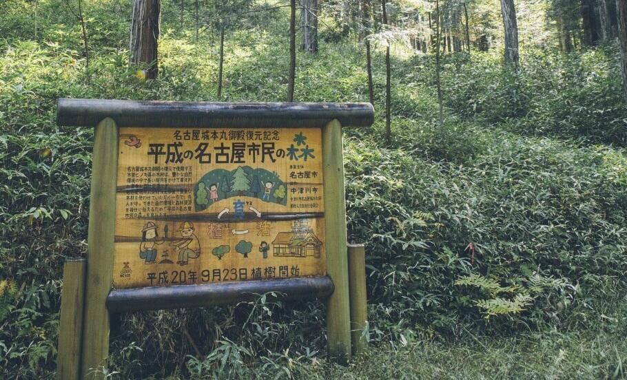 市民の森.jpg